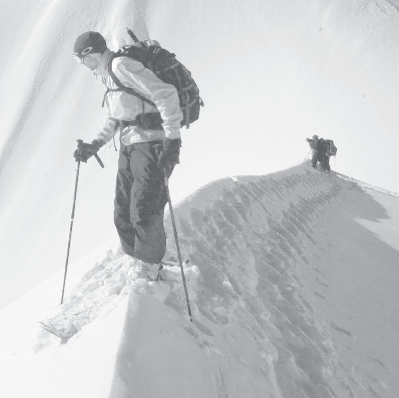 AUTONOMY MASTERY AND PURPOSE in the Avalanche Patch by Bruce Kay